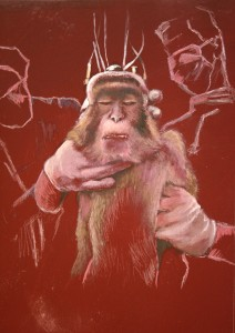 Kognitive Versuche an Affen - Hirnforschung